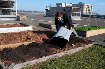 Cultivation of a new raised garden bed