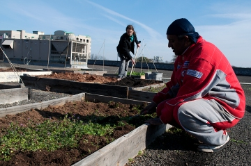 Urban gardeners