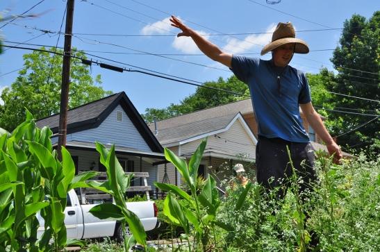 Jesse Orrock pulling weeds